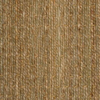 Zeegras Hamat  Seagrass 115