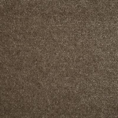 Duurzaam tapijt Van Besouw 2605  575
