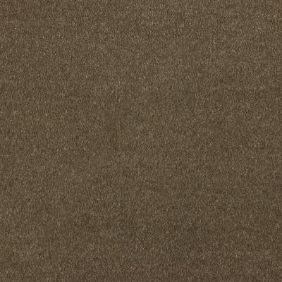Duurzaam tapijt Van Besouw 2606 520