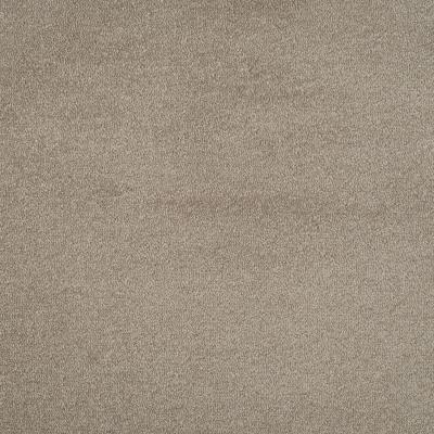 Duurzaam tapijt Van Besouw 2607 510